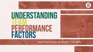 Team Performance Management